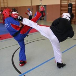 Kickbox Prüfung - Anmeldeschluss 31.01.2011