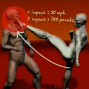 Human Weapon - Beste Techniken