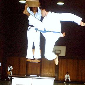 Taekwondo: Der Nopi Chagi